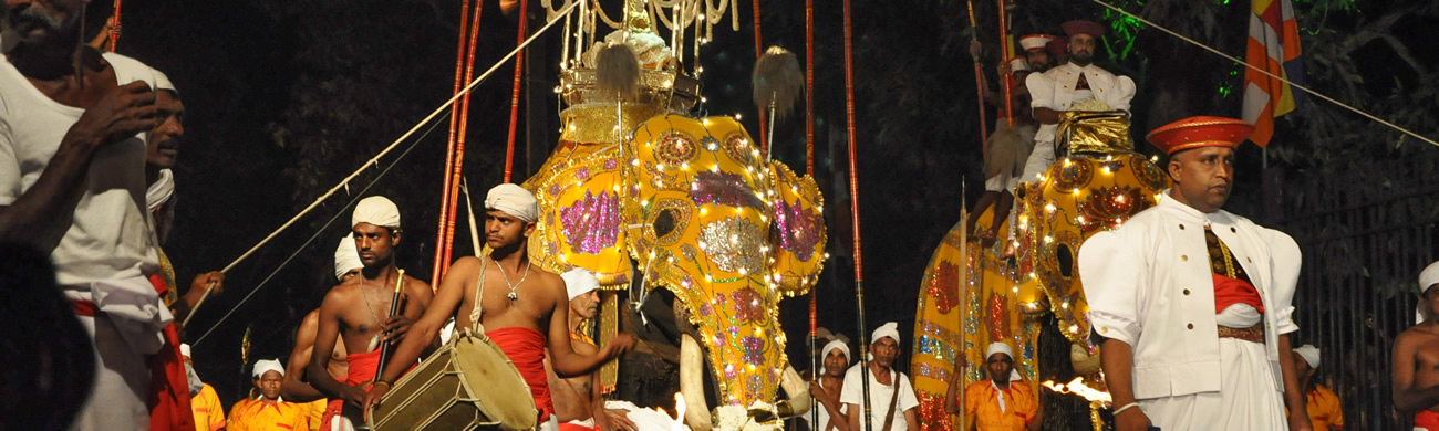 Kandy Esala Perahera (The Festival of the Tooth) - Kandy, Sri Lanka