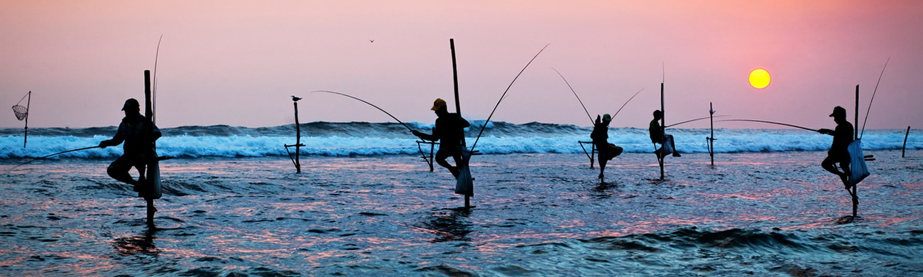 Traditional stilt fishermen - Sri Lanka