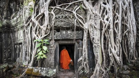 Monk in Angkor Wat Cambodia. Ta Prohm Khmer ancient Buddhist temple
