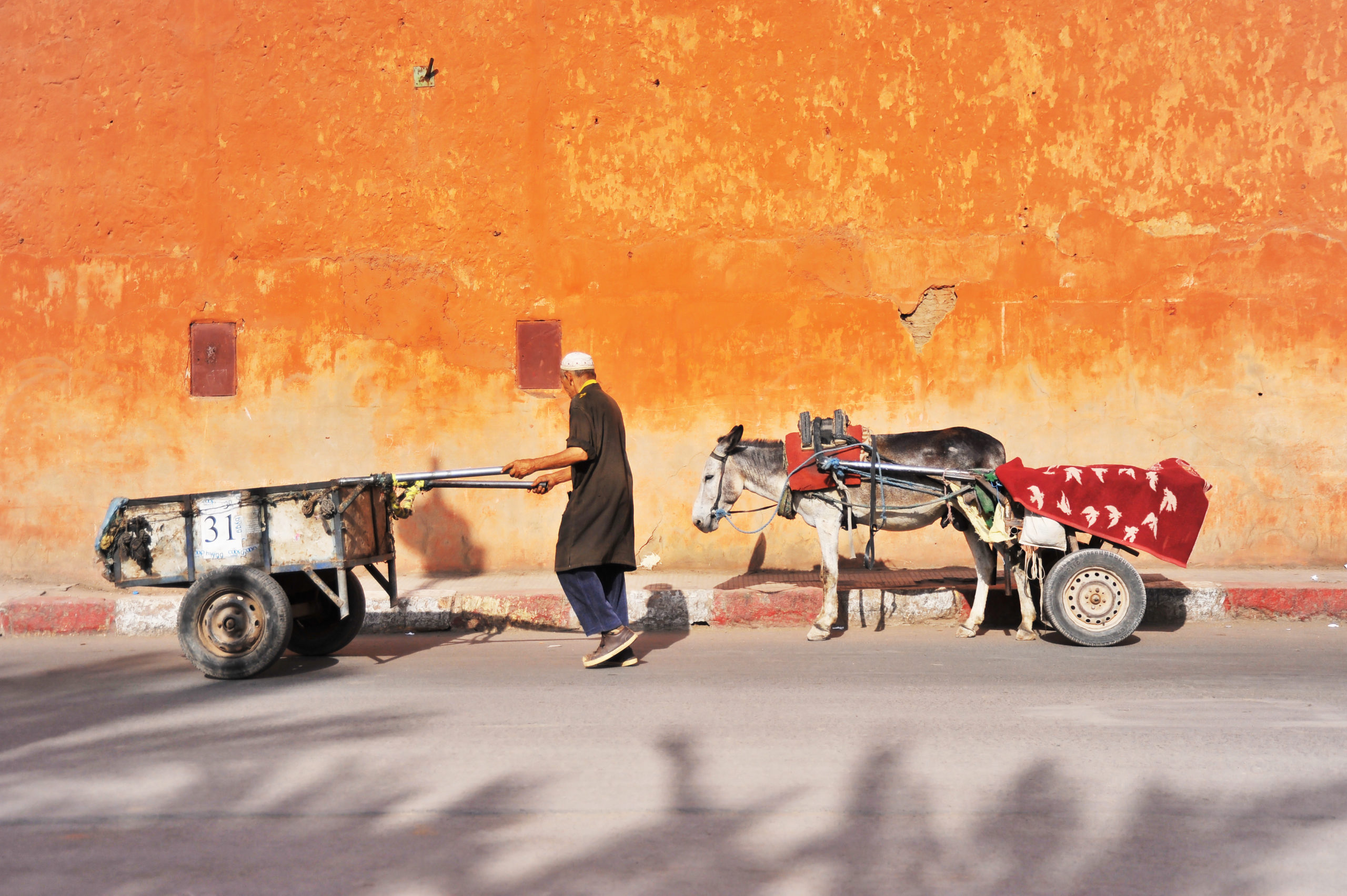 A donkey pulling a wagon of goods faithfully follows a man pushing a cart of goods next to a faded, earthen hued building