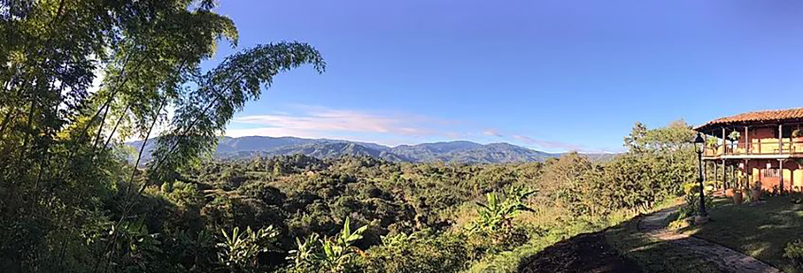 A lush green landscape with many trees, in the distance there are mountains, and off to the side is the Monasterio Hotel