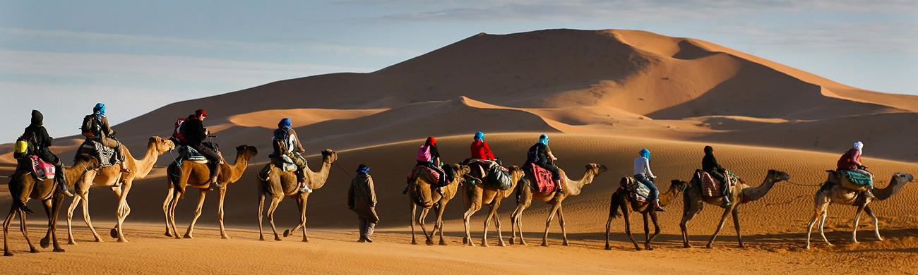 Camel trek - Sahara Desert, Morocco