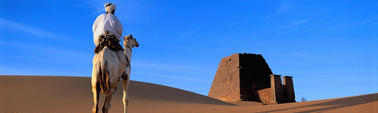 Meroe Camel - Sudan